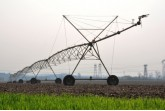 L'agricoltura industriale è la vera causa dell'inquinamento !