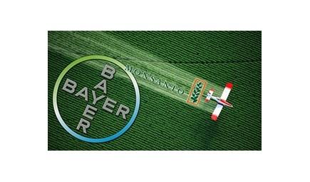 Più di 1/3 dei ricavi dei 5 big dell'agrofarma deriva da pesticidi tossici