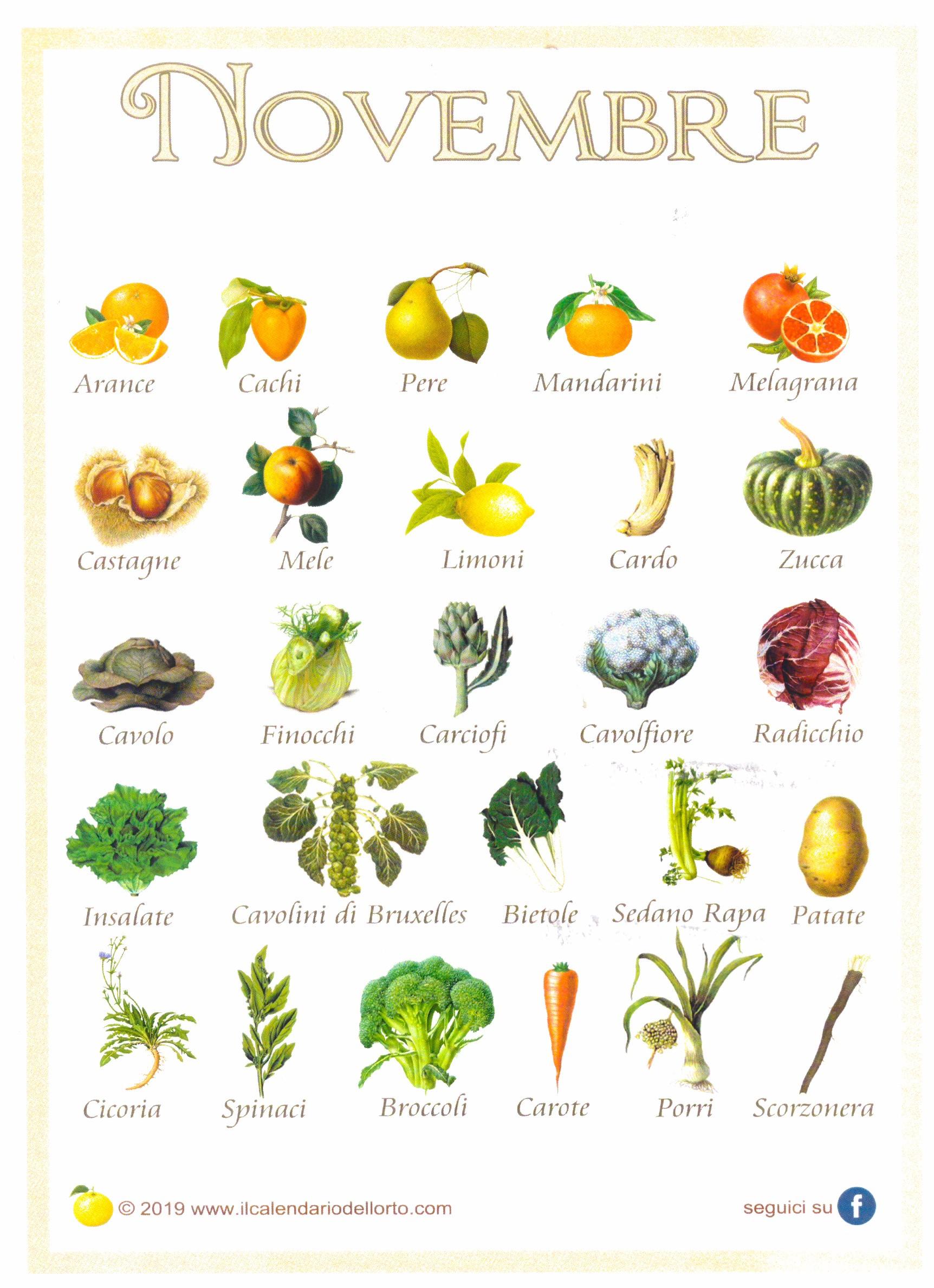 La Frutta e la verdura di Novembre