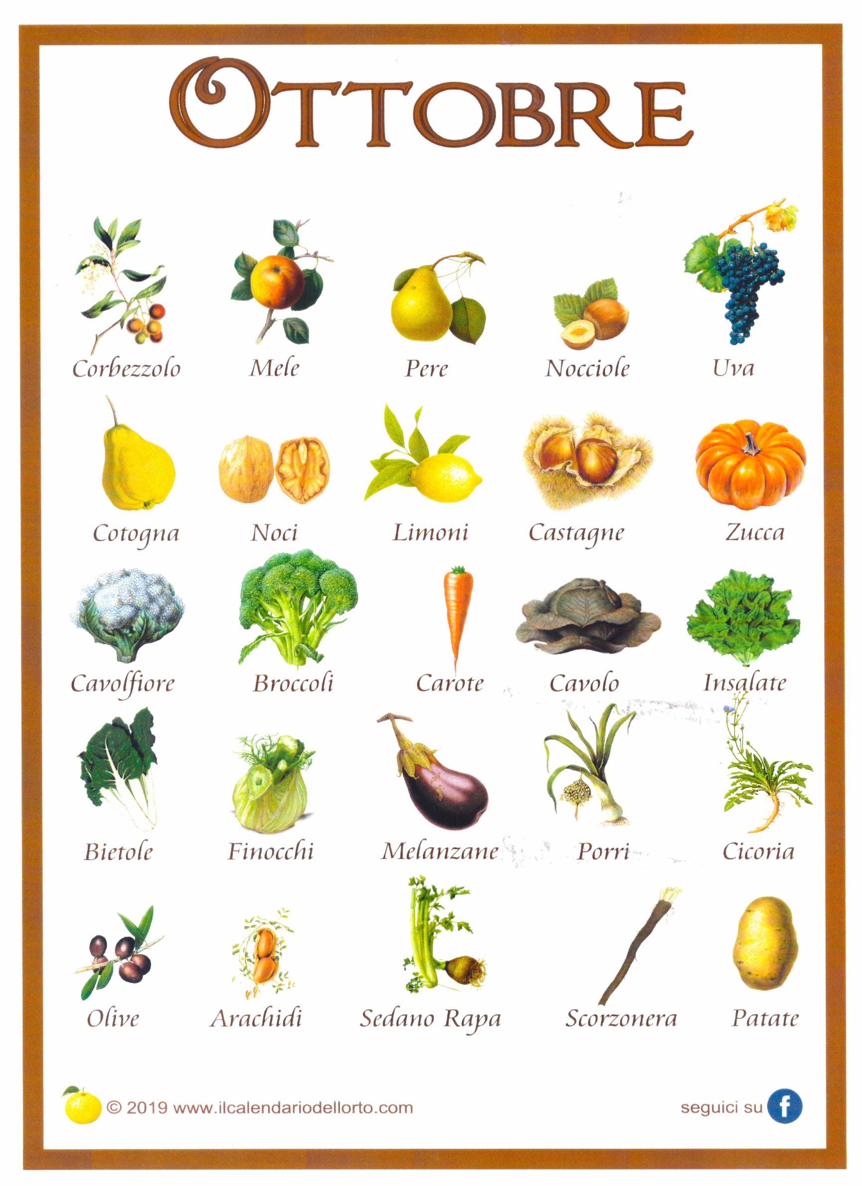 La frutta e la verdura di Ottobre